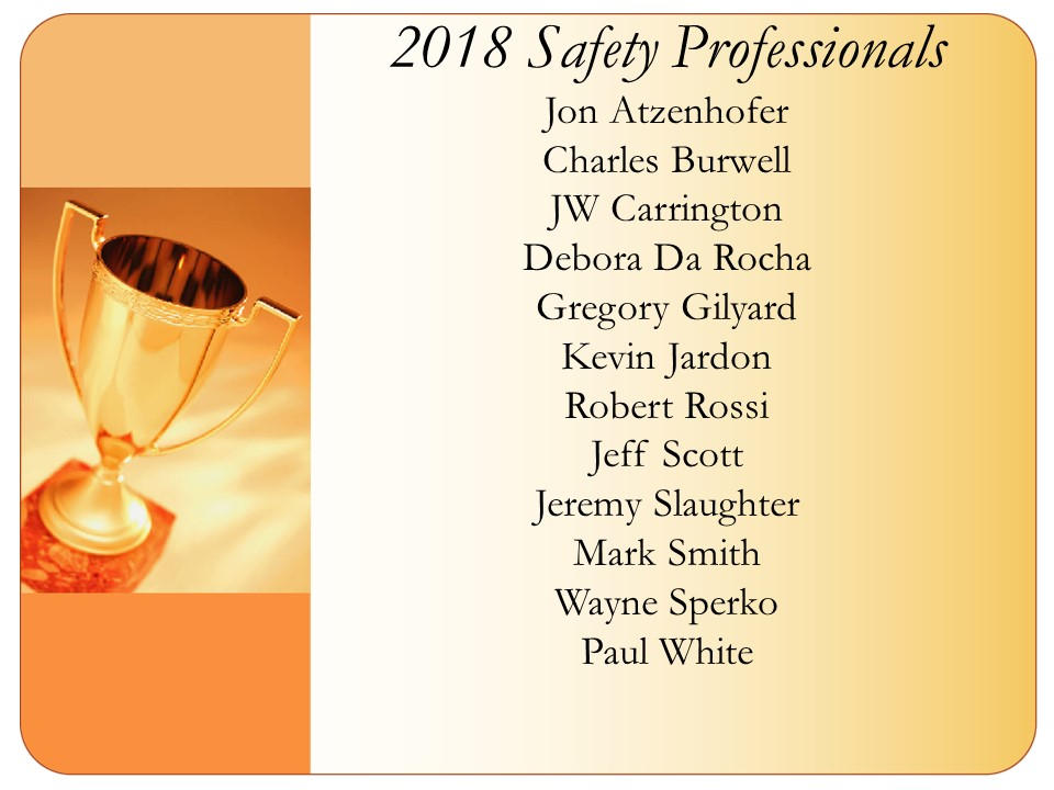 2018 Safety Professionals