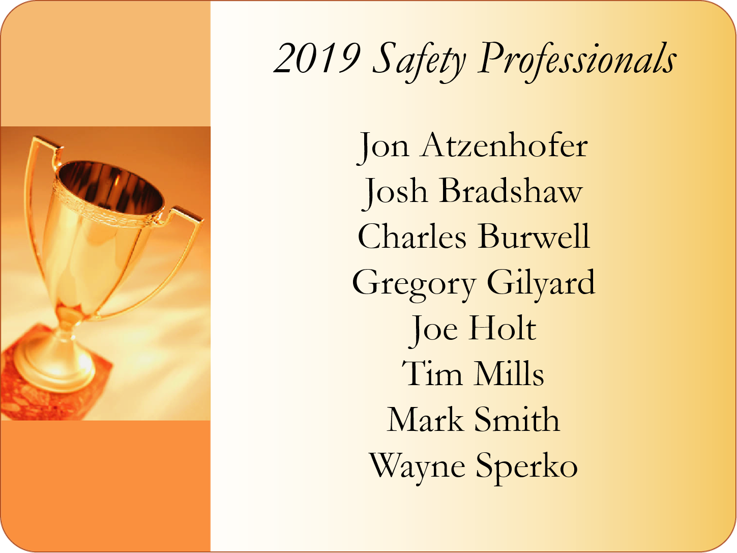 2019 Safety Professional Awards