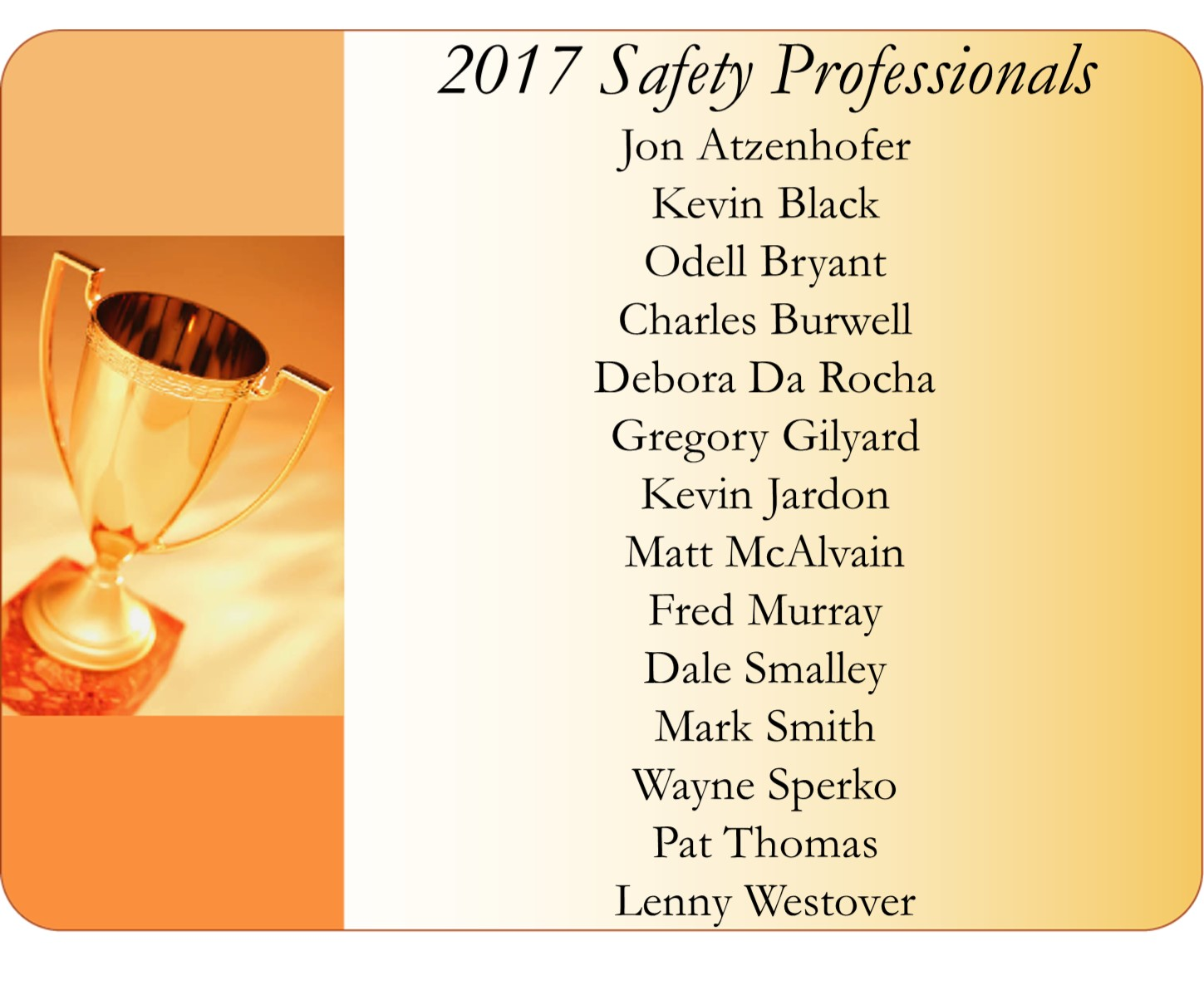 List of Drivers Who Achieved 2017 Safety Professional Awards