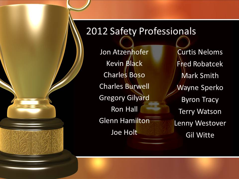 2012 Safety Professionals